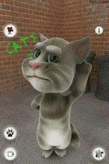 download Talking Tom Cat Free apk