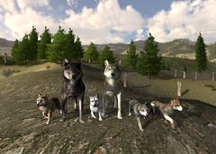download WolfQuest mac