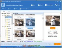 download MiniTool Power Data Recovery Free