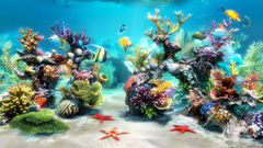 download Sim Aquarium