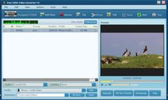 download Free CUDA Video Converter